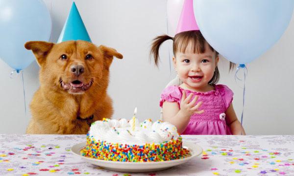 Cumpleaños Bodas Bautizos Comuniones